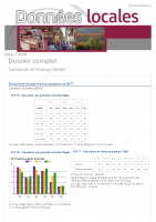 Dossier Insee Sonnay